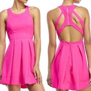 L'atiste by Amy Hot Pink XS Dress